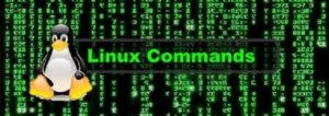 Comandos y utilidades de Linux